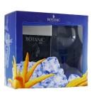 Botanic Ultra Premium London Dry Gin 45% 0,7 l zestaw ze szklanką